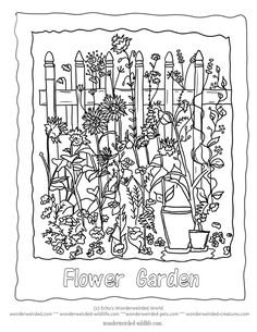 Flower Garden Coloring Sheet 1 with added floral lettering to color in A little picket fence is the perfect backdrop for this little garden design, it could be painted white or pale country blue to give it a rustic blue. Tall sunflowers are reaching out to grow large and bloom right over the rest of the flower garden