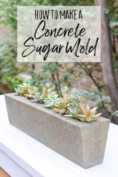 How to make a rustic and industrial style sugar mold planter out of concrete. This farmhouse home decor project has a twist because of the texture of concrete. This planter would be perfect for a windowsill or a centerpiece for an outdoor farmhouse table. You can use this concrete sugar mold to plant succulents or hold silverware for a unique outdoor decor style. Modern farmhouse style comes to life with this concrete planter. Diy Concrete Planters, Concrete Projects, Indoor Planters, Diy Planters, Diy Projects, Concrete Molds, Succulent Planters, Indoor Succulents, Planter Ideas