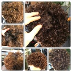 Color:Shlomi Ruimi. How To Dry Basil, Herbs, Hair Styles, Color, Colour, Herb, Hair Looks, Hair Cuts, Hairdos
