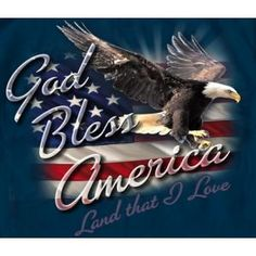 137 Best God Bless Our Nation Images God Bless America I Love