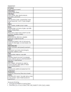 Brain Sheet Midfold VitalsShift Assessment And Rounds Report