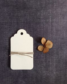30 Medium Cream Tags, Gift Tags, Party Favor Tags, Scalloped - pinned by pin4etsy.com