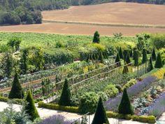 Visite des Jardins du Château de Val Joanis, à Pertuis en Luberon - http://visitez-la-provence.fr/blog/chateau-de-val-joanis-des-jardins-dans-les-vignes-du-luberon/