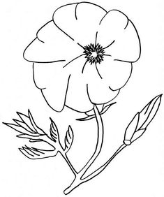 California Poppy, : California Poppy Image Coloring Page Poppy Coloring Page, Flower Coloring Pages, Animal Coloring Pages, Coloring Pages For Kids, Coloring Sheets, Coloring Books, Poppy Images, Vegetable Coloring Pages, Remembrance Day Poppy