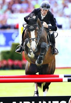 14-31-d5589b-Marcus-Ehning-GER-Plot-Blue-kwpn Dutch Warmblood, Warmblood Horses, Equestrian Style, Equestrian Fashion, Cute Ponies, English Riding, Horse Drawings, Hunter Jumper, Show Jumping