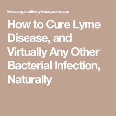 How to Cure Lyme Disease, and Virtually Any Other Bacterial Infection, Naturally