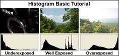 Tips Cara Membaca Histogram Foto dari Kamera Digital dan Photoshop   Teknik Fotografi Pemula