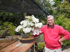 Pack you backpack, pack your wife and kids, and prepare for the annual spring 2016 Bonsai exhibition that will go down this week. Friday, June 10... Bonsai Trees For Sale, Wife And Kids, Bonsai Garden, Spring 2016, Backpack, June, Friday, Backpacker, Backpacking