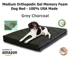 Pet Support Systems Orthopedic GEL Memory Foam Washable Dog Bed for Medium Size Breed, 34-Inch x 22-Inch x 4.5-Inch, Grey Plush Micro-Suede -- Find out more about the great product at the image link.