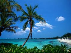 Bahamas:) quiet trip I went on back in 1997 with a GF and I finished my book on those beaches:)