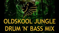 Oldskool Jungle Drum n Bass Mix Music Stuff, Music Songs, Dj Hype, Dark Jungle, History Of Dance, Dark Wave, Dance Remix, Rave Music, Drum N Bass