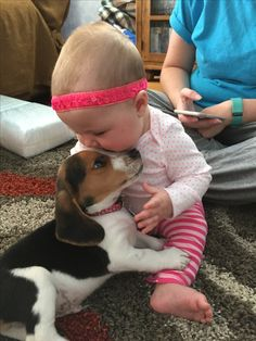 #mutual love #beagles