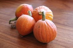 Golden Nugget pumpkin harvest. February 2012. Katherine Cooper.