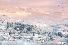 winter landscape - soft colors at dawn, the mountain village
