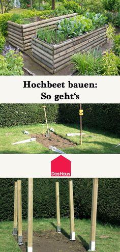 Die 43 Besten Bilder Von Hochbeet In 2019 Apartment Gardening