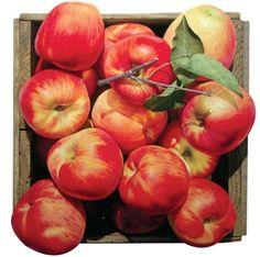사과 그림만 그리는 작가? 윤병락의 사과 그림 : 네이버 블로그 Apple Picture, Apple Farm, Spice And Wolf, Apple Fruit, Apple Pie, Korean Art, Art Hoe, Fruit Art, Photo Manipulation