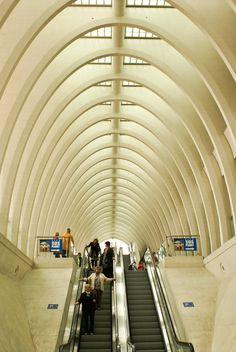 Train station Liège-Guillemins. Design by Santiago Calatrava