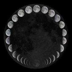photo moonphases.jpg