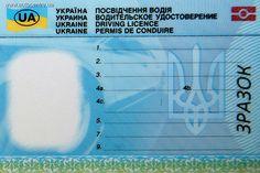 Водительские удостоверения и техпаспорта в Украине подешевеют на 40%