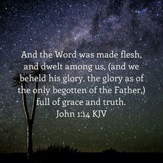 And the Word was made flesh, and dwelt among us, (and we beheld his glory, the glory as of the only begotten of the Father,) full of grace and truth. John 1:14 KJV http://bible.com/1/jhn.1.14.KJV