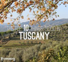 Top 10 Things to do in Tuscany, Italy|Extra Pack of Peanuts|