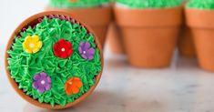 Terra-Cotta Cupcakes