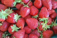 9 Fresh, Juicy Berry Varieties to Tempt Your Taste Buds: Strawberries