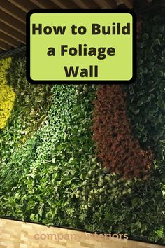 In This Video you will learn how to use your moss wall art to build a moss wall using preserved moss. The Moss used in Ball Moss , Flat Moss and Lichen. The Moss wall requires no maintenance. These Pre-Made Panels Make is Easy and Quick to Build an Amazing Moss Wal.  So you can create your own moss wall and install in your office or home. Interior Designers like to specify moss walls as they create a eco-friendly style to their interior home décor. #mosswalls #mosspanels #mossframes #moss Money Tree Bonsai, Money Trees, Moss Wall Art, Moss Art, Diy Crafts Materials, Moss Decor, Washroom Design, Moss Wreath, Eco Friendly Fashion