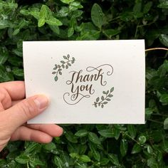 Shop our 'thank you' card collection and find the perfect cards to show how grateful you are!