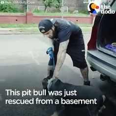 Dog Rescued From Basement - Helden - Animals Cute Baby Animals, Animals And Pets, Funny Animals, Cute Puppies, Cute Dogs, Dogs And Puppies, Doggies, Rescue Dogs, Animal Rescue