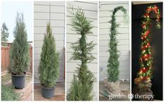 How to Make a Nine-Foot Grinch Tree - Garden Therapy