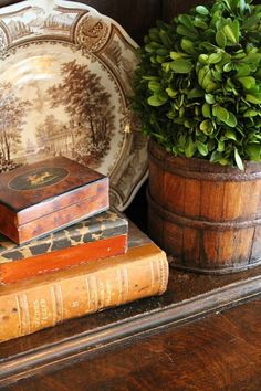 Vintage French Soul ~ Farmhouse Decorating ~ Beautiful Vignette ~ Transferware ~ Old Books ~ Boxwood Plant English Country Cottages, English Country Decor, Country Farmhouse Decor, French Country Style, French Country Decorating, Cottage Decorating, Decorating Ideas, Country Chic, English Style
