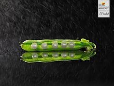 Photographer Nando Esteva - ES FUM - ADVERTISING - Food - Finalist - ONE EYELAND PHOTOGRAPHY AWARDS 2014