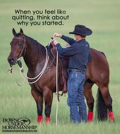 Perfect quotes from the perfect horse trainer