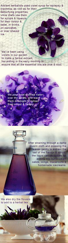 violet-tea