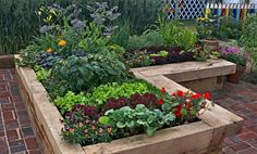 Learn about garden design ideas for your home. This guide from the gardening experts at The Home Depot will help you design an edible, ornamental or popular contemporary garden. Building A Raised Garden, Raised Garden Beds, Raised Beds, Edible Garden, Easy Garden, Tree Mulch, Raised Vegetable Gardens, Vegetable Gardening, Sensory Garden