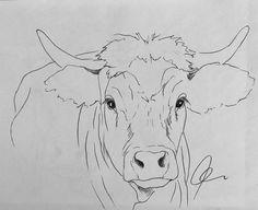 Cow art drawing www hoerskens de Cow Paintings On Canvas, Animal Paintings, Animal Drawings, Art Drawings, Cow Drawing, Drawing Sketches, Painting & Drawing, Cow Sketch, Farm Art