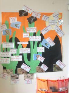 Attitudes and TDS Skills cacti Classroom Environment, Professional Development, Cacti, Reusable Tote Bags, Cactus Plants, Continuing Education