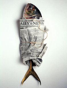 junikon: vis en krant