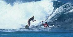 ¿Cuántas veces faltas a tu palabra en una sesión? ¿Qué hacemos para que nos posea el diablillo de las olas?, ¿por qué saltamos olas a los amigos con premeditación y alevosía?...  Palabra de Surfer | Radical Surf Palabra de Surfer PRÓLOGO Slater había salido hacía unos segundos, Pipeline estaba perfecto, un mano a mano con un amigo, Machado cogió la siguiente. Igual de profundo, igual de bestial, con su fuerza todavía tocando su espalda y… RADICALSURFMAG.COM http://radicalsurfmag.com/palabra