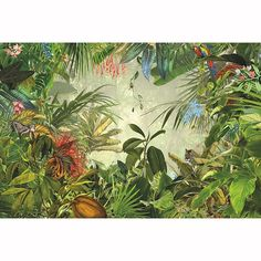 "Get Wild From our National Geographic Collection With a surprise behind every leaf, this scenic wall mural lets you enjoy the spectacular view of a tropical rain forest. Watch tigers, parrots and other exotic creatures in their natural habitat, all from a safe distance of course! PRODUCT FEATURES 12'1"" x 8'2"" 4 Panel Mural Paste Not Included Printed on Non Woven Material Ships to USA & Canada only"