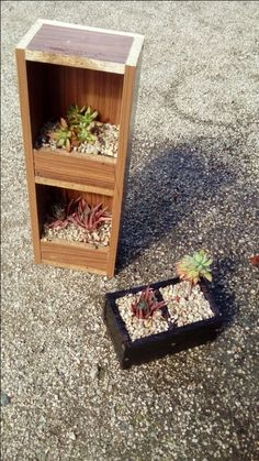 Reclaimed wood succulent boxes