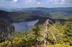 Černé jezero (Black Lake) in Šumava (South-West Bohemia), Czechia Bohemia People, Heart Of Europe, Seen, Beautiful Places In The World, Central Europe, Future Travel, Czech Republic, Nature Photos, Land Scape