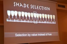 dental congress,dental education,shade selection,medical training,dental esthetics