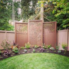Privacy Fence Landscaping, Florida Landscaping, Small Backyard Landscaping, Backyard Plan, Backyard Cottage, Landscape Plans, Landscape Design, Garden Design, Fence Ideas