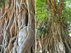 Day trip to Ayutthaya Wanderland, Day Trip, Garden Sculpture, Temple, Thailand, Outdoor Decor, Temples