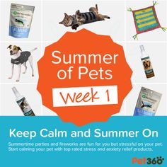 http://www.pet360.com/custom/lifestyle/summer-of-pets/AFBrg4hCAUqRHWSDgm-rgw?utm_medium=BloggerProgramutm_source=SummerOfPetsutm_campaign=Week1_SummerOfPetsextcid=SOPBlogger