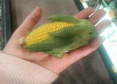 Corn husk, bunny