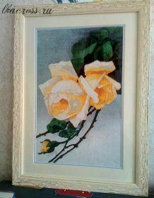 Схема для вышивки крестом Белая роза