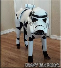 Star Wars Stormtrooper DIY dog costume, see more at http://diyready.com/diy-dog-costume-ideas-halloween-fun-for-your-pooch
